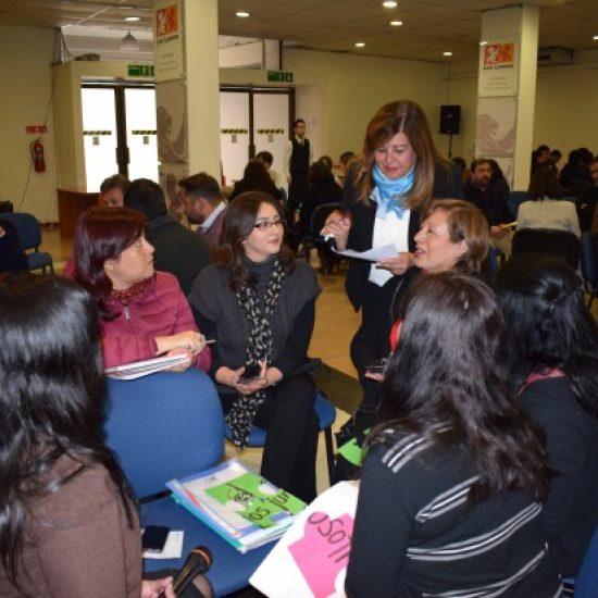 Instituto Profesional Los Leones presentó Proceso de Actualización y Modernización de sus carreras para el año 2018