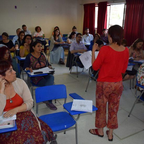 Comités Curriculares de Escuela validaron el reciente proceso de Acompañamiento al Aula a docentes del IPLL