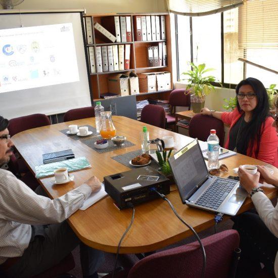 Académica de la Universidad de Talca orientó al IPLL en proyecto  de Vinculación con el Medio
