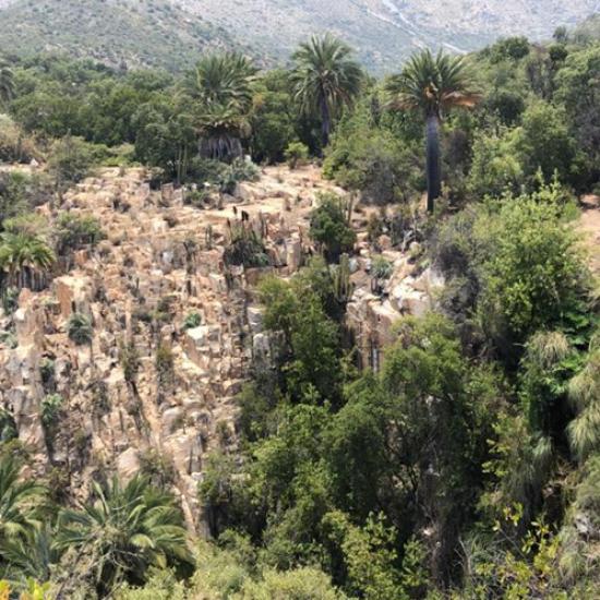 Escuela de Construcción y Minería analizó terreno del Parque Nacional La Campana